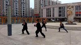 张玉革演练洪传陈式太极拳一路阳谷盛世名门