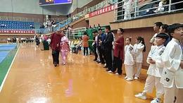 2015年全国武术太极拳公开赛 温县站 集体颁奖2