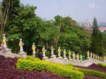 西双版纳行*勐泐大佛寺景区