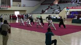 《体彩杯》2017年河南省武术段位大赛   集体项目
