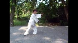 杨式二十七式太极拳  演练陈庆琳