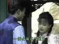 台湾电视剧【婉君】主题歌:婉君(李翎君)