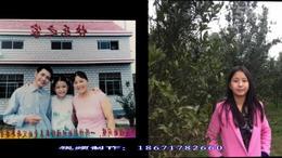 歌曲祝寿歌 枝江市顾家店高殿寺李健生日纪念 红喜数码传媒
