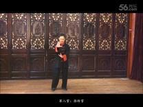 张光萍八卦掌教学视频——定式转掌结束
