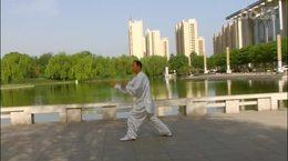 贾廷义杨式43式太极拳(最新版)