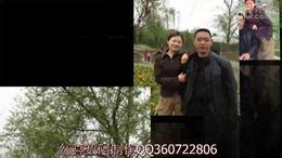 张孝英20120418桃花和菊花展(红喜数码传媒)