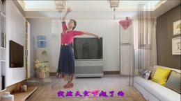 感悟人生广场舞《心上的罗加》