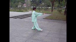 杨式传统八十五式太极拳演练陈庆琳