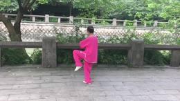 二十四式养生太极剑演练陈庆琳