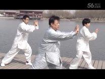庞大明先生讲解杨式简化28式太极拳(第4讲)