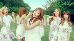 '【维斯独家】韩国美女组合A Pink最新单曲《Petal》