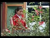 云南山歌剧 《花心败家贼  全集》