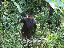 云南山歌剧矮人大闹分家第2集