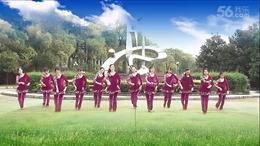 大塘角广场舞 红马鞍 编舞:春英