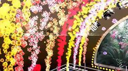 男人的无奈 枝江市顾家店镇石半坡广场舞潘祖梅 红喜数码传媒2015...