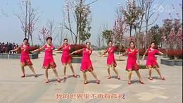 琪子广场舞 (95) 亲爱的 (团队版)