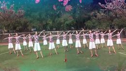 健身舞——梨花白