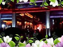 黎明金山  枣庄古城夜晚美景  视频相册