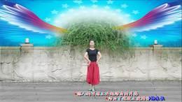 《飞翔的翅膀》207丁丁深圳冰之霞九江丁丁广场舞编舞:王梅