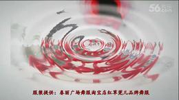 张春丽广场舞《李》编舞:张春丽(演绎广州队)亮度版