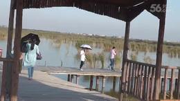 再游曹妃甸湿地公园(小提琴钢琴协奏曲《三年》)...