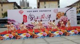 2017年5月18日长安老体武协太极神韵参赛·'国韵风华·'健身大赛