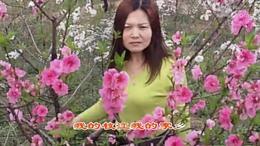 我的枝江 我的家乡 宜昌市枝江市红喜数码传媒20150322张洪芹