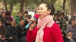 郑州第十一届海棠文化节 碧沙乐团王艳演唱《山丹丹开花红艳艳》