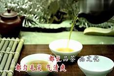 刘和刚 贵州茶香ktv宽