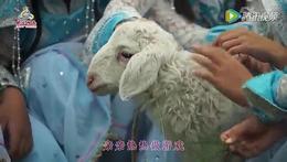 《牧羊小姐妹》2015快乐阳光童歌会