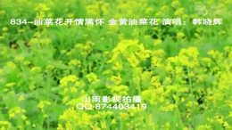 834 油菜花开情满怀 金黄的 春天素材 演唱:韩晓辉 南宁市视频摄像...