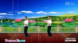 凤凰六哥广场舞爱情的美丽正反面附分解