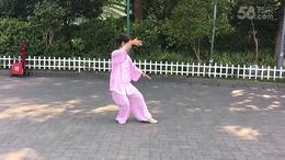 八十五式太极拳 演练陈庆琳