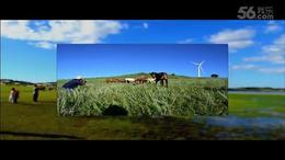 降央卓玛《美丽的草原我的家》