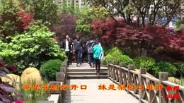 贵州经典山歌-隔河看到花一林
