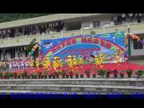 舞蹈《小鸡小鸡》/上传:韦英江