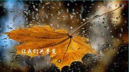 《微风细雨》李维君二胡演奏