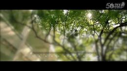 《送别》MV温情首发   孙楠与小女儿传递亲情力量