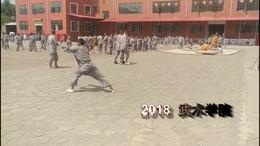 螳螂拳 2018