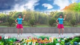 100上海阿英广场舞 我是群主 编舞:青儿 视频制作演示:阿英
