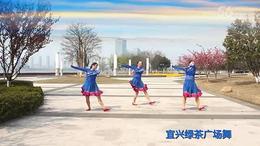 宜兴绿茶广场舞《谁见过梦中的草原梦中的河》编舞:静静
