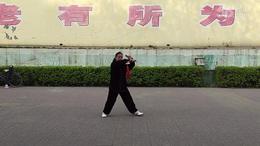 陈式太极剑习练视频