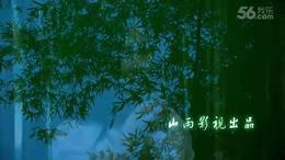 M012 一帘幽梦 小马 竹林 南宁市视频拍摄 摄像 个人mv影视制作...