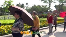 TSH视频田 快乐的厦门旅游 伤不起