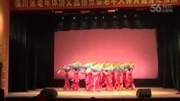 舞蹈我的祖国