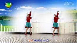 武胜英莉梅广场舞 祝酒歌 编舞:沐河清秋