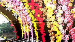 醉月亮 枝江市顾家店镇石半坡广场舞罗晓英 红喜数码传媒20150820