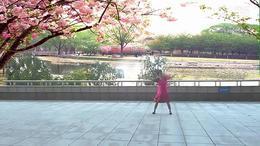 周 丽萍广场舞 亲爱的你在哪里_