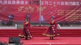 2017年大方县牛场乡花坡节表演节目之十四——草原小精灵
