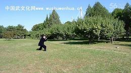 郭彦君老师演练四十二式太极剑竞赛套路